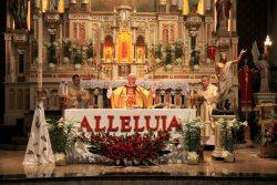 Rejestracja na Msze święte w kwietniu